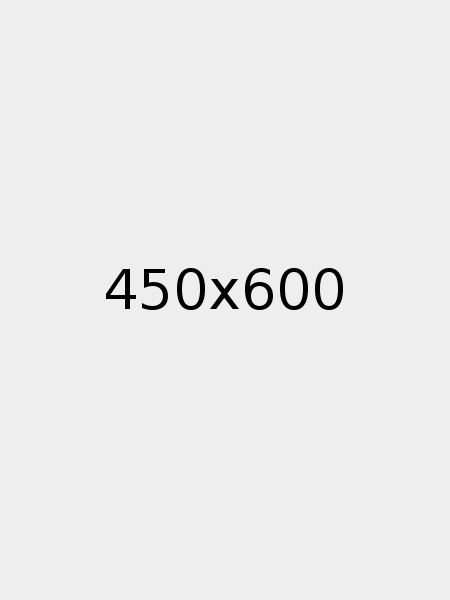 450x600